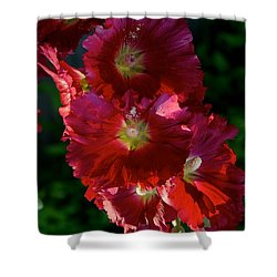 Shower Curtain featuring the photograph Fertile by Joseph Yarbrough