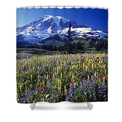 Field Of Blooming Wildflowers In Shower Curtain by Natural Selection Craig Tuttle