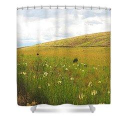 Field Of Dandelions Shower Curtain by Anne Mott