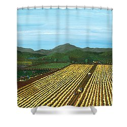 Field Of Yarrow-that's A Flower Shower Curtain