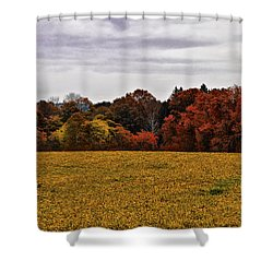 Fields Of Gold Shower Curtain by Bill Cannon