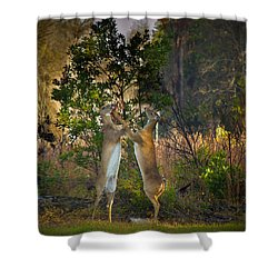Fight Club Shower Curtain by Christopher Mobley