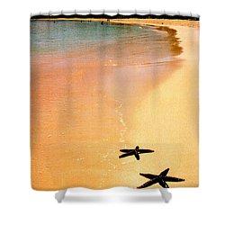 Fiji Beach With Starfish Shower Curtain by Jerome Stumphauzer