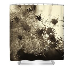 Filaments Shower Curtain by Eunice Gibb