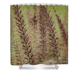 Filigree-iv Shower Curtain by Susanne Van Hulst