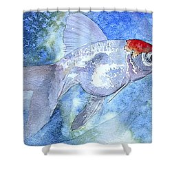 Fillet Shower Curtain