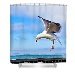Final Approach - San Francisco Shower Curtain