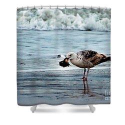 Fine Ocean Dining Shower Curtain by Paul Ward