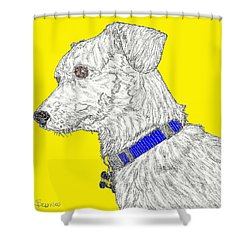 Finn In Color Shower Curtain by Salvadore Delvisco
