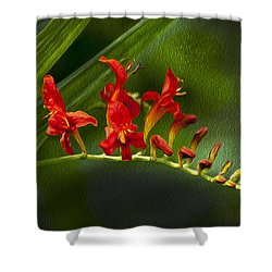 Fire In The Garden Shower Curtain