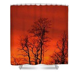 Fire Sky Shower Curtain by Bonnie Myszka