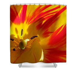 Fire Tulip Shower Curtain