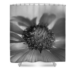 Shower Curtain featuring the photograph Firewheel In Mono by Vicki Pelham