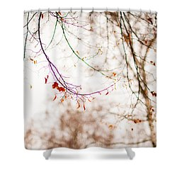 First Snow. Touch Of Gold Shower Curtain by Jenny Rainbow