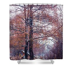 First Snow. Winter Coming Shower Curtain by Jenny Rainbow