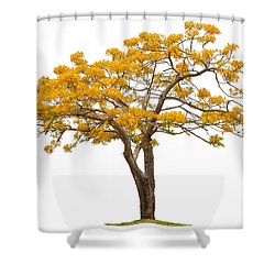Flam Of The Forest Shower Curtain by Atiketta Sangasaeng