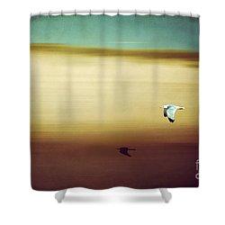 Flight Over The Beach Shower Curtain by Hannes Cmarits