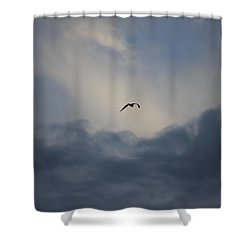 Shower Curtain featuring the photograph Flight To Heaven by Penny Meyers