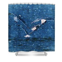 Flock  Shower Curtain by Debra  Miller