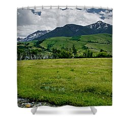 Flood Relief Shower Curtain by Roderick Bley