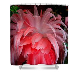 Shower Curtain featuring the photograph Flora And Fauna Number Two by Lon Casler Bixby