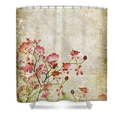 Floral Pattern Shower Curtain by Setsiri Silapasuwanchai