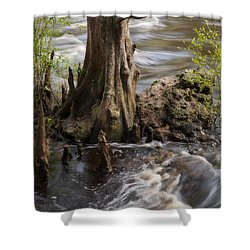 Shower Curtain featuring the photograph Florida Rapids by Steven Sparks