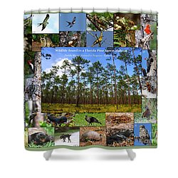 Florida Wildlife Photo Collage Shower Curtain