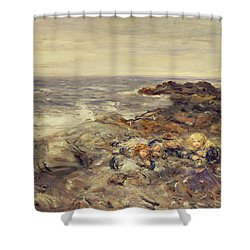 Flotsam And Jetsam Shower Curtain by William McTaggart