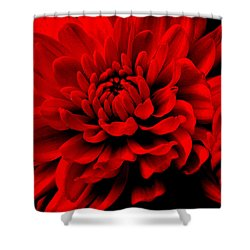Flower 1  Shower Curtain