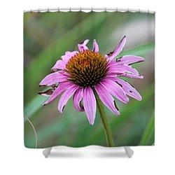 Flower At Waterfall Glen Forest Preserve Shower Curtain