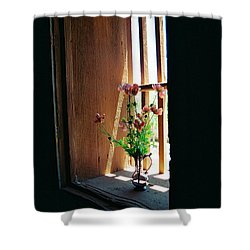 Flower In Window Shower Curtain