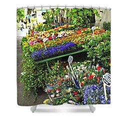Flower Stand In Paris Shower Curtain by Elena Elisseeva