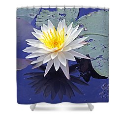 Flowering Lily-pad- St Marks Fl Shower Curtain