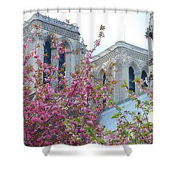 Shower Curtain featuring the photograph Flowering Notre Dame by Jennifer Ancker