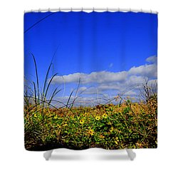 Flowers At The Beach Shower Curtain
