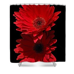 Flowers From My Son Shower Curtain by Cindy Manero