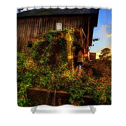 Flowers On Old Bulldozer Sunset Shower Curtain by Dan Friend