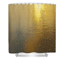 Flowing Gold 7646 Shower Curtain by Michael Peychich