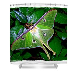 Shower Curtain featuring the photograph Fly Me To The Moon by Judi Bagwell