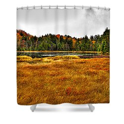 Fly Pond On Rondaxe Road Shower Curtain by David Patterson
