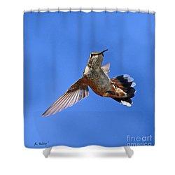 Flying Backwards - No Problem Shower Curtain