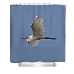 Shower Curtain featuring the photograph Flying Egret by Jeannette Hunt