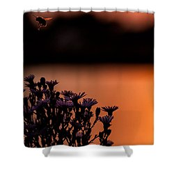 Shower Curtain featuring the photograph Flying Home by Tom Gort