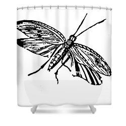 Flying Insect Shower Curtain by Granger