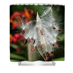 Flying Milkweed Silk Shower Curtain by Sabrina L Ryan
