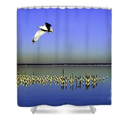 Shower Curtain featuring the photograph Flying Solo by Clayton Bruster