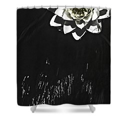 Flying Water Lily Shower Curtain