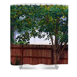 Shower Curtain featuring the photograph Fog In Olympia by Jeanette C Landstrom