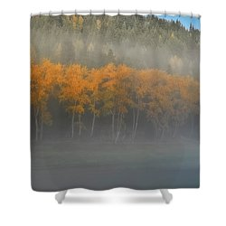 Shower Curtain featuring the photograph Foggy Autumn Morning by Albert Seger